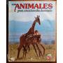 Los Animales: Gran Enciclopedia Ilustrada 1-2: Los Mamíferos