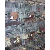 Jaulas Para Chinchillas ,conejos Y Resto