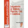 Manual Guia Estudio Universitario Derecho Procesal Civil Hlq