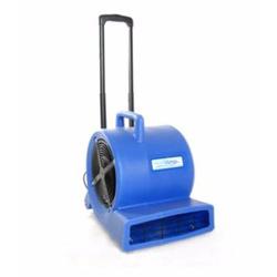 Secador de Alfombras 3 Velocidades 900 W
