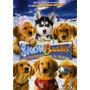 Snow Buddies - Cachorros En La Nieve - Dvd - Original!!!