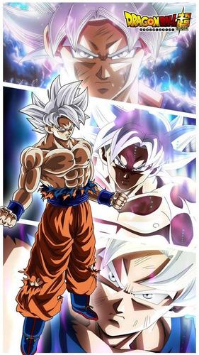 Dragon Ball Posters Alta Definicion X 10 Unid. 33x47 Cm