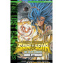Saint Seiya The Lost Canvas 35 Ivrea Argentina