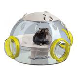Accesorio Topo,jerbo,hamster Lab Ferplast Il Cane Pet Food