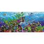 Rompecabezas Educa Panorama 3000 Piezas Arrecife Puzzle