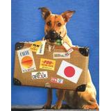 Traslados De Mascotas Y Personas - A Todo El Pais - Mudanzas