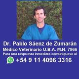 Veterinario A Domicilio,castración Perras Y Perros Aconvenir