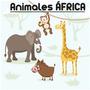 Vinilo Kit Animales Selva Jirafa-jabali-elefante-mono Grande