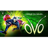Cirque Du Soleil Ovo Gold Later A