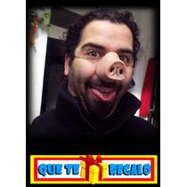 Nariz De Porky, Chancho, Fiesta De Disfraces, Hot, Solteros