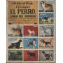 Un Libro De Oro De Estampas El Perro, Amigo Del Hombre N° 8