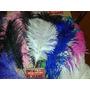 Plumas Artisticas-cotillon-carnaval - 25-35 Cm
