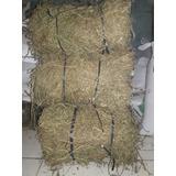 Heno De Alfalfa Alimento; Conejos, Cobayos X 4kg. Caba