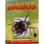 Escarabajo De Las Flores. Colección Insectos. Revista Bichos