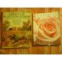 Lote Libro Y Revista Jardín Y Plantas De Interior Rochford
