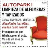 Lavado Y Limpieza De Tapizados Y Alfombras-casas-autos-ofic
