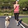 Correa Manos Libres Para Correr Con Tu Perro - Dog Run -