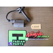 Bobina De Kawasaki Ninja 250 Ex Gpx Gpz Zzr Eliminator K2003