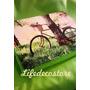 Bandeja-almohadon Para Cama/sillon = Notebook/netbook/leer