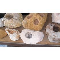 Piedra Pomez Para Acuarios Y Cactus ,valor Con 1 Agujero
