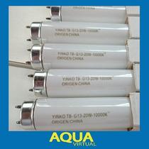 Tubo Fluorecente 10000k Simil Aquastar Para Acuario 15 Y 20w