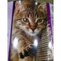 Rascador Cat It Con Cat Nip Exclusivo Envios Moron Julypets