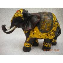 Elefante De La Suerte !!