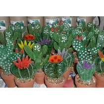 Cactus De Vidrios