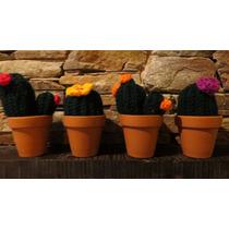 Cactus Decorativos En Crochet
