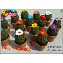 Cactus Tejidos En Macetas