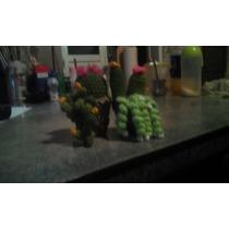 Cactus Tejidos A Crochet Y Otros