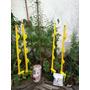 Kit Cerca Jardin V 3hilo Jabalina Energizador P/ Cmascotas