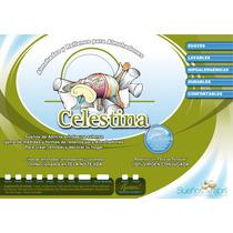 Almohadones Celestina, Rellenos De 40x40cm
