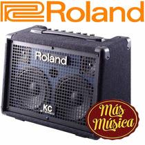 Amplificador Operado A Pilas Para Teclado Roland Kc-110