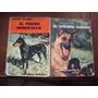 Lote De 5 Libros Sobre Cría De Perros Rottweiler Doberman