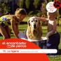 El Encantador De Perros. La Higiene. 15. Millán + Dvd