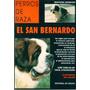 El San Bernardo - Perros De Raza - Giovanni Morsiani