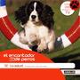 El Encantador De Perros. La Salud. 12. Millán + Dvd