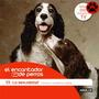 El Encantador De Perros. La Sexualidad. 13. Millán + Dvd