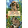 Pequeños Animales De Compañia Conejo Enano Ratones Chinchill