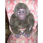 Antiguo Chimpance De Cuero Y Piel Articulado