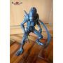 Aliens Vs Predator / Alien Warrior - Proxyworld