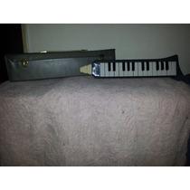 Flauta Armonica Melodica - Hohner