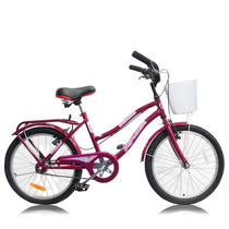 Bicicleta Nena R20 Completa Canasto Asiento Playero Parrilla