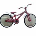 Bicicleta Rod 24 X- Terra Space Mujer En Richad Bikes