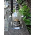 Botella De Whisky De Colección.