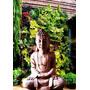 Buda Gigante Blanco