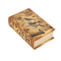 Caja Libro Retro Marrón