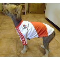 Camiseta River Plate Oficial Para Mascotas. Partida Limitada