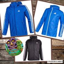 Campera Adidas Anthem Jacket (envíos A Todo El País)